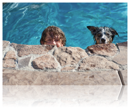 Liquid pool covers are safe for use as recommended, even for pets and/or children a