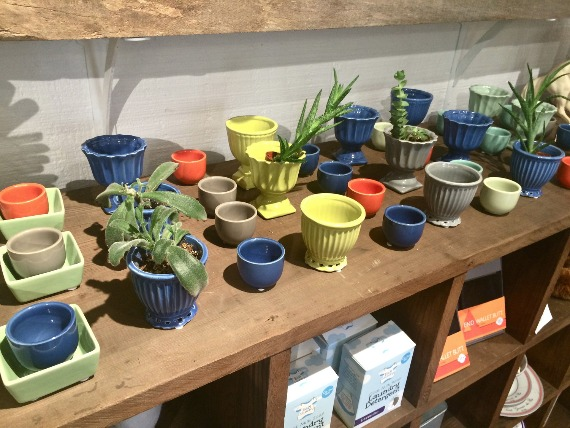 Cute pots in Kiko