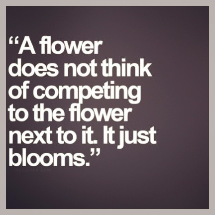 Inspiration quote that inspires Ivy & Co.