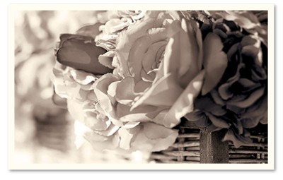 black and white photo of roses in a basket