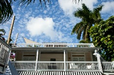 photo of sky and palm tree and alexanders guesthouse upper level balcony