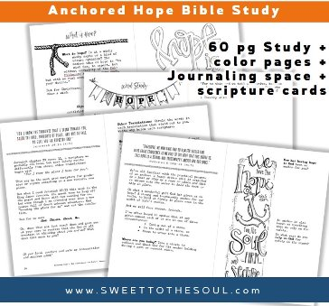 Sweet to the soul ministries anchored hope kit 60 pages including hope word study verse mapping instructions pages prayer journaling pages hebrews 618 19 study bible journaling template maxwellsz