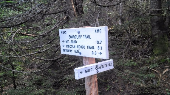 Trail Markers Near Guyot Campsite