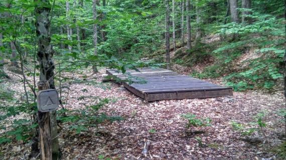 Rocky Branch Shelter #1 - Tent Platform #1
