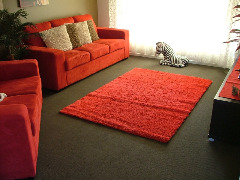 red lounge suite and rug