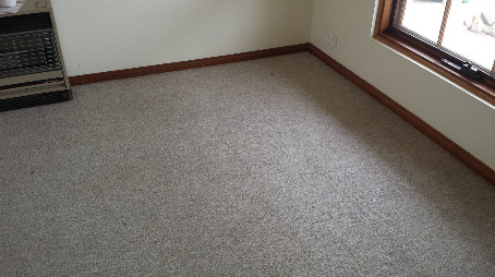 room of clean carpet