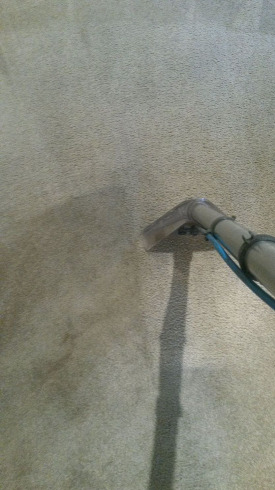 cleaning wand cleaning carpet picture 2