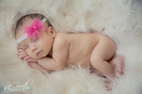 newborn photography, round rock, pflugerville, props, session, cedar park