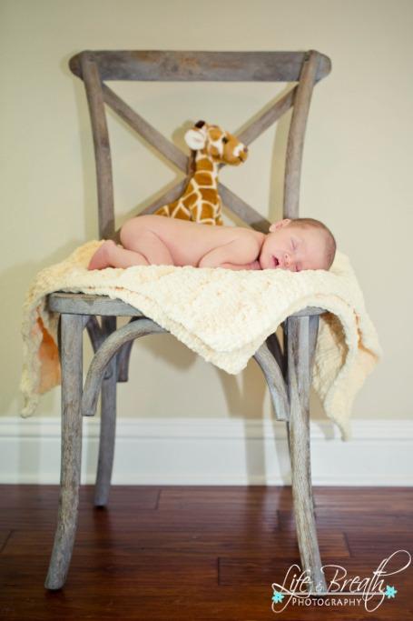 newborn photography chair