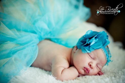 newborn photography tutu