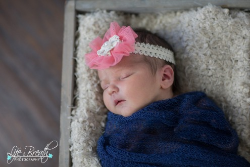 newborn photography wooden crate