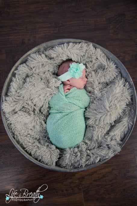 newborn photography mint green