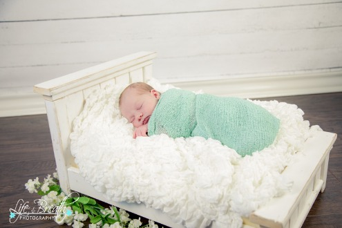 newborn photography bed