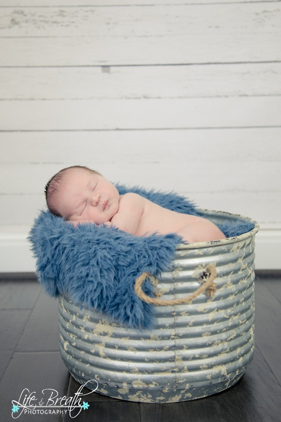 pflugerville newborn photographer, round rock, hutto, baby boy, metal bucket