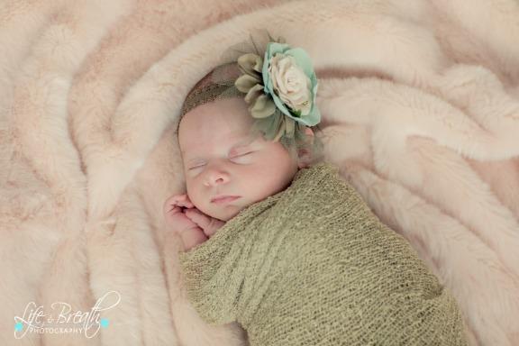 pflugerville newborn photographer, baby girl, hands folded