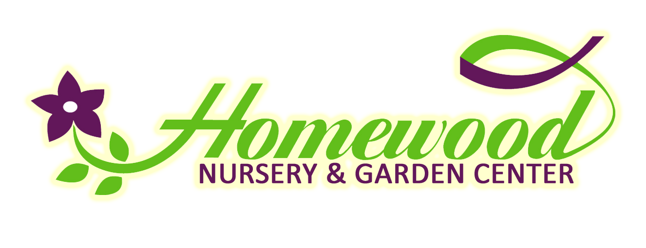 Elegant Homewood Nursery   Rooted In Raleigh Since 1967!