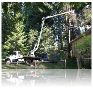 portland bucket truck services by rctreescapes